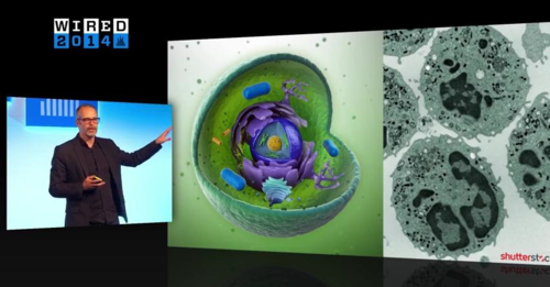 Human Cell Autodesk Research Wired
